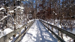 Kensington Trail After Snow